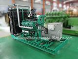 60Hz of 50Hz de Generator van het 100kw Aardgas met Stille Luifel voor LNG of CNG