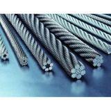 Acier inoxydable 304 ou câble métallique 316