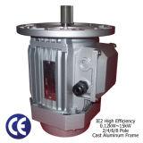 Motore asincrono a tre fasi (blocco per grafici della fusion d'alluminio, 1/5-20HP)
