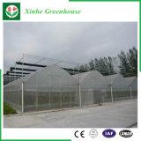 Het Groene Huis van de Plastic Film van de landbouw voor Groenten/Bloemen/Tuin