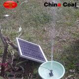 최신 판매 Sdw-A61 태양 수도 펌프