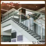 Disegno di vetro interno dell'inferriata dell'acciaio inossidabile per l'hotel delle scale (SJ-H1415)