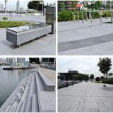 Progetto di strada grigio del granito di Singapore G654 G603