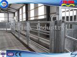 Headlocks скотин коровы горячего DIP оборудования поголовья гальванизированные (FLM-F-004)