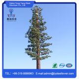 Torretta cammuffata dell'albero di pino per le Telecomunicazioni