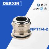 NPT1 / 4-NPT2 Direct Fabricante Pre-explosión de metal Prensa de cables de todos los tamaños