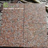 Плитка стены пола гранита клена G562 красная пылаемая Non-Slip