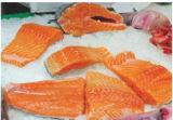 Cortador inteligente de la porción de los pescados frescos