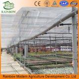 Equipos de ahorro de agua para invernaderos Sistema de riego por goteo
