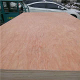Decorative를 위한 Produce The Bintangor Plywood에 Excellent Linyi Factory