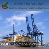 Грузовой корабль контейнера морского транспорта LCL FCL от Китая к Ньюарк, США