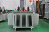 transformateur de distribution de la tension 10kv pour le bloc d'alimentation