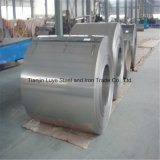 Het beste Roestvrij staal van de Kwaliteit rolt 304