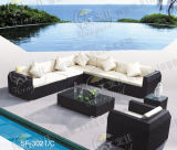 Insiemi esterni del sofà, mobilia del rattan del patio, insiemi del sofà del giardino (SF-302)