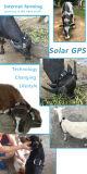 Les traqueurs de l'énergie solaire GPS en temps réel pour la vache à bétail choie les crabots de chats Anti-Détruits et le moniteur par $$etAPP mobile