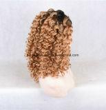高品質のインドのRemyの毛の完全なレース水かつらの波