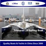 경주를 위한 Trimaran 29 항해 배