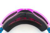 Лыжа Eyewear защитных стекол вспомогательного оборудования объектива PC Revo размера молодости большая