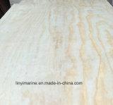 Grado de madera de la madera contrachapada D/D del pino de las hojas