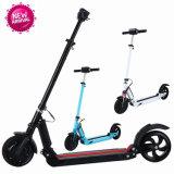 2つの車輪のスマートな電気自己のバランスのスクーター
