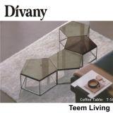 Квартиры ног таблицы MDF ног таблицы MDF мебели комнаты Divany журнальный стол T-57D живущий стеклянной стеклянной стеклянный