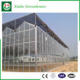 Système en verre de culture hydroponique de serres chaudes pour des légumes/fleurs/fruit