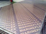Madera contrachapada Shuttering hecha frente de la madera contrachapada de la película impresa con Logoes