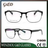 형식 대중적인 디자인 스테인리스 가관 광학 프레임 안경알 Eyewear V0810