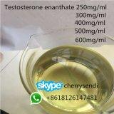 대략 완성되는 테스토스테론 Enanthate Customizable 주사 가능한 기름 액체 600mg/Ml