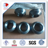 tipo acciaio inossidabile Weldolet di 3000X50 Schedule40 A304 di Mss Sp-97