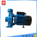 pompe à eau centrifuge d'irrigation agricole monophasé de 0.75kw /1HP Hf/5