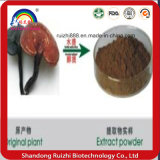 High End Broken Ganoderma Lucidum Spore Powder