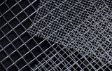 Buona rete metallica saldata PVC di qualità