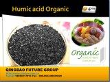 Potássio Humate no fertilizante orgânico