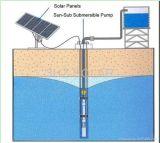 Großhandelsswimmingpool RO-Wasser-Reinigungsapparat-Geräte