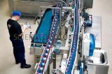 Gebottelde Frisdrank die Machine/de Sprankelende Machine van de Machines van de Lopende band van het Sap/De Commerciële Lijn van de Verwerking van de Drank van de Energie maken