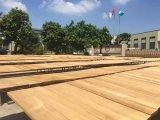 بورما [تك] خشب منشور ويهندس خشب صلد أو [دكينغ] خشب أرضية
