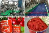 Linea di produzione dell'ostruzione della frutta della natura/succo di frutta che elabora macchinario