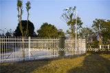 Haohan 백색 간단한 산업 주거 안전에 의하여 직류 전기를 통하는 강철 담 25