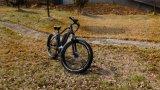 La MEDIADOS DE potencia del mecanismo impulsor monta en bicicleta las bicis grandes de los cabritos de las bicis del crucero de la playa con el neumático gordo muy grande