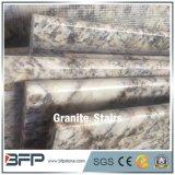 Impronta del granito di Fox di G874 Snowy per le mattonelle della scala del pavimento dell'hotel e della villa