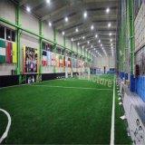 Prefab стальное здание гимнастики для сбывания