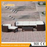 Insieme esterno del sofà della piattaforma dell'angolo del rattan del salotto della mobilia del giardino del Brown di nuovo stile