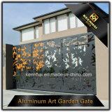 Porte d'entrée en aluminium de vie moderne