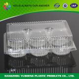 투명한 경첩을 단 뚜껑을%s 가진 처분할 수 있는 플라스틱 케이크 상자