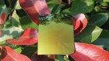 Les lunettes colorées ont polarisé la lentille de lunettes de soleil de lentille de Tac (le jaune d'or de T)