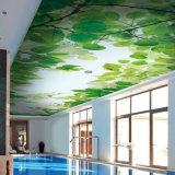 Пленка потолка простирания нестандартной конструкции супер популярная самомоднейшая для украшения