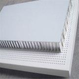 Panneau de panneau en aluminium à rayures en forme de nid d'abeille à vendre (HR911)