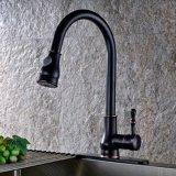 Le robinet de cuisine retirent le taraud simple de traitement de pulvérisateur
