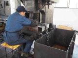 Catena dell'acciaio inossidabile di G80 45mm